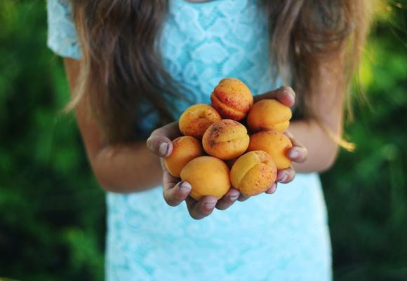 Girl holding yellow round fruits 4018843
